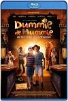 La Momia Dummie, y la Tumba de Achnetut (2017) HD 720p Latino Y Subtitulada