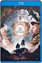 El hombre que mató a Don Quijote (2018) HD 720p Latino y Subtitulada