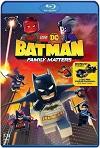 LEGO DC: Batman – La Bat-familia importa (2019) HD 720p Latino y Subtitulada