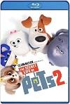 La vida secreta de tus mascotas 2 (2019) HD 720p Latino y Subtitulada