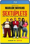 Sextillizos (2019) HD 720p Latino y Subtitulada