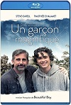 Beautiful Boy: Siempre serás mi hijo (2018) HD 720p Latino y Subtitulada