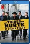 Los Tigres Del Norte En La Prisión de Folsom (2019) HD 1080p Latino