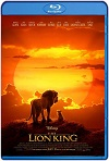El rey león – The Lion King (2019) 720p Latino