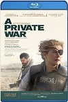 A Private War [La corresponsal] (2018) HD 720p Latino