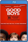Good Boys (Chicos Buenos) (2019) HD 720p Latino