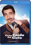 Como Caído Del Cielo (2019) HD 720p Latino