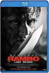 Rambo 5: Last Blood (2019) HD  720p Latino