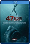 47 Meters Down: Uncaged 2019 (2019) HD 720p Latino