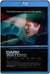 El Precio de la Verdad / Dark Waters (2019) HD 1080p Latino