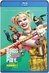 Aves de Presa (2020) HD 1080p