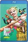 Aves de presa (2020) HD 720p Latino