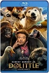 Dolittle (2020) HD 720p Latino