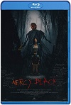 La posesión de Mercy Black (2019) HD 1080p Latino