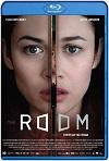 The Room (2019) HD 1080p Latino