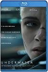 Amenaza en lo profundo (2020) HD 1080p Latino