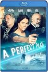 A Perfect Plan (2020) HD 720p