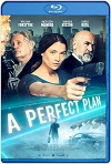 A Perfect Plan (2020) HD 1080p