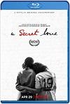 Un amor secreto (2020) HD 1080p Latino