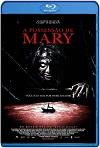 La posesión de Mary (2019) HD 720p Latino