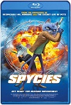 Spycies (2019) HD 720p  Latino