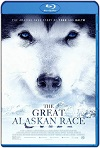 The Great Alaskan Race (2019) HD 720p