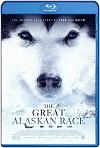 The Great Alaskan Race (2019) HD 1080p