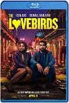 The Lovebirds (2020) HD 720p Latino