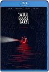 The Wild Goose Lake  (2019) HD 720p