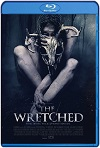 The Wretched (2019) HD 720p