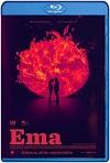 Ema (2019) HD 720p Latino