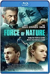 Force of Nature (2020) HD 720p