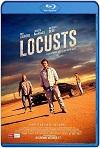 Locusts (2019) HD 720p Latino