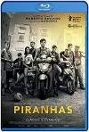 Pirañas / La paranza dei bambini (2019) HD 720 Castellano