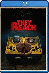 They Reach (2020)  HD 1080p