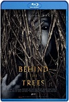 Behind the Trees (2019) HD 720p Latino