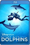 Diving with Dolphins (2020) HD 720p