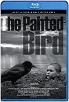 El Pajaro Pintado (2020) HD 720p Castellano