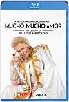 Mucho Mucho Amor La Leyenda de Walter Mercado (2020) HD 720p Latino