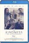 La amabilidad de los extraños (2019) HD 720p