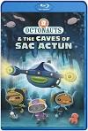 Los Octonautas y las cuevas de Sac Actun (2020) HD 1080p Latino