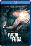 Pacto de Fuga (2020) HD 720p Latino