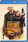 Paydirt (2020) HD 720p