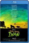 El Unico y Gran Ivan (2020) HD 1080p Latino