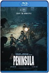 Estación Zombie 2 Península (2020) HD 1080p Latino