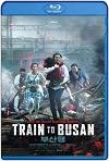 Estación Zombie: Tren a Busan (2016) HD 720p Latino