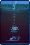 Carga (2018) HD 1080p Latino