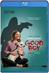 Good Boy 2020 HD 720p Latino
