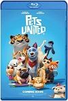 Mascotas unidas / Pets United (2019) HD 720p Latino