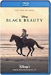 Belleza Negra (2020) HD 1080p Latino